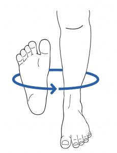 Full exam of leg